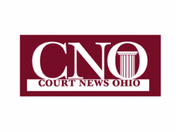 Article: Handle with CARES: Court Uses Federal Funds to Expand Community Support (CNO, Sukosd 2020)