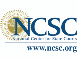 Resource: National Center for State Courts - Tiny Chat on Navigators