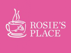 Report: Survey of Social Workers in Massachusetts (Rosie's Place 2015)