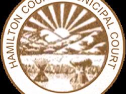 Resource: Ohio - Hamilton County Municipal Court Self-Help Center - 6 Month Report (2018)