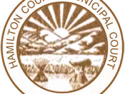 Resource: Ohio - Hamilton County Municipal Court Self-Help Center - Staff & Volunteer Manual (2017)