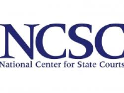 Report: Building A Litigant Portal: Business and Technical Requirements (NCSC 2015)